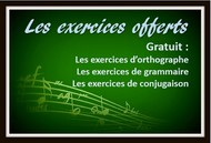 Les exercices offerts.
