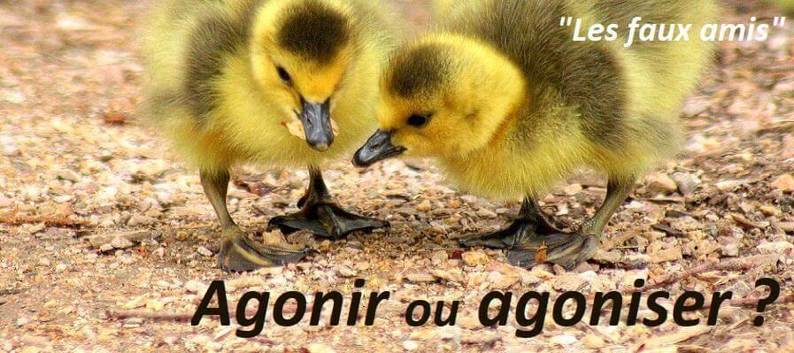 orthographe faux amis agonir ou agoniser