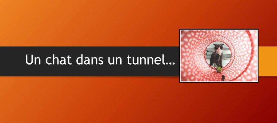 tunnel mots en el