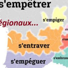 les mots régionaux, locaux, nationaux